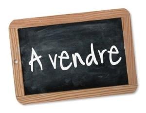 Vente propriété Rambouillet à vendre, Vente Terre Agricole Rambouillet à vendre, Vente Propriété équestre Rambouillet à vendre, Vente Hectare Rambouillet à vendre, Vente Propriété Yvelines 78 à vendre